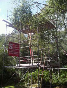 Scaffolding at private residence